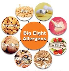 special-diets-big8